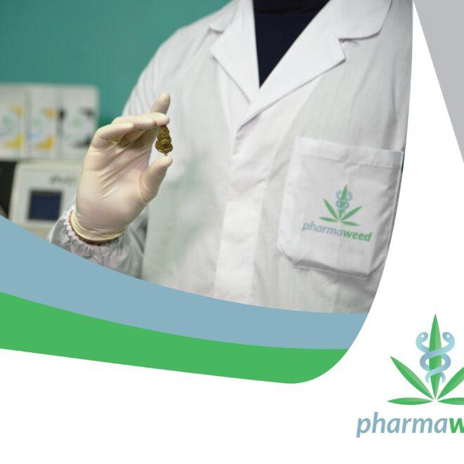 pharmaweed-2